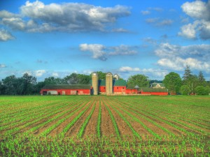 farm-in-spring-1164275-1279x958