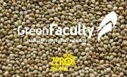 Semillas Cáñamo alimento greenfaculty