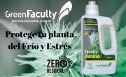Faculty Amino fertilizante cannabis marihuana abono
