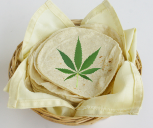 Tortita cannabis marihuana recetas comida greenfaculty fertilizantes nutrientes abonos