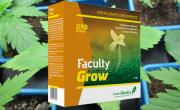 Faculty Grow abono creciemientos fertilizante sólido polvo soluble greenfaculty marihuana cannabis