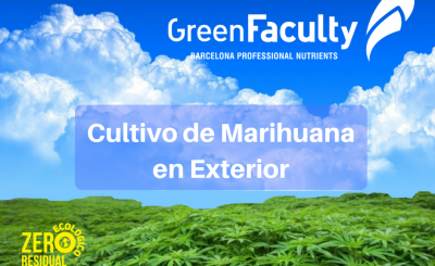 Cultivo-Marihuana-Exterior-cannabis-abonos-fertilizantes-nutrientes-greenfaculty
