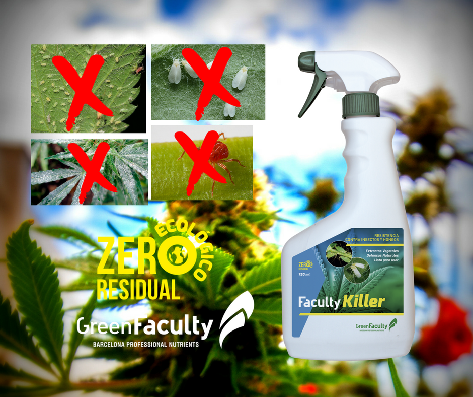 Faculty-Killer-insecticida-acaricida-fungicida-marihuana-cannabis