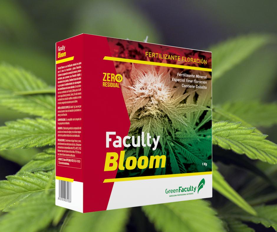 el mejor fertilizante sólido para floración marihuana cannabis