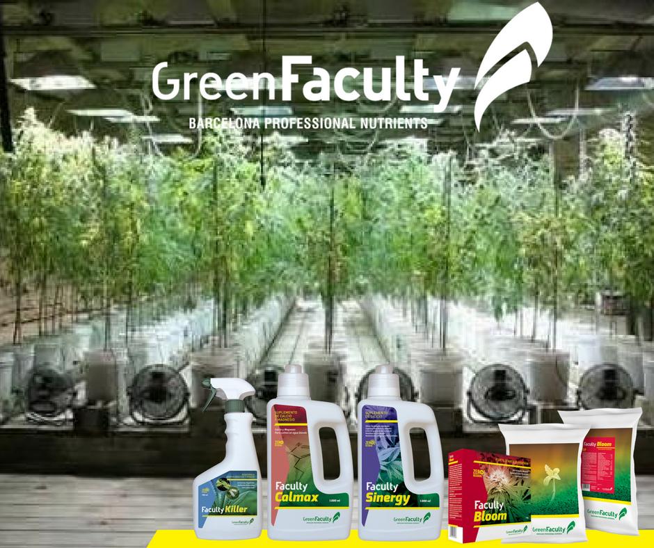 los mejores fertilizantes para marihuana en coco